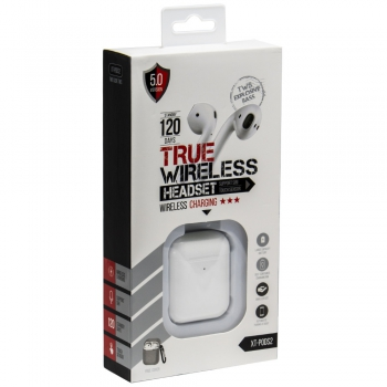 True Wireless Oordopjes