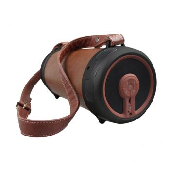 LeSenZ BlueSenz HYPE 2.1 Outdoor Bluetooth Speakers